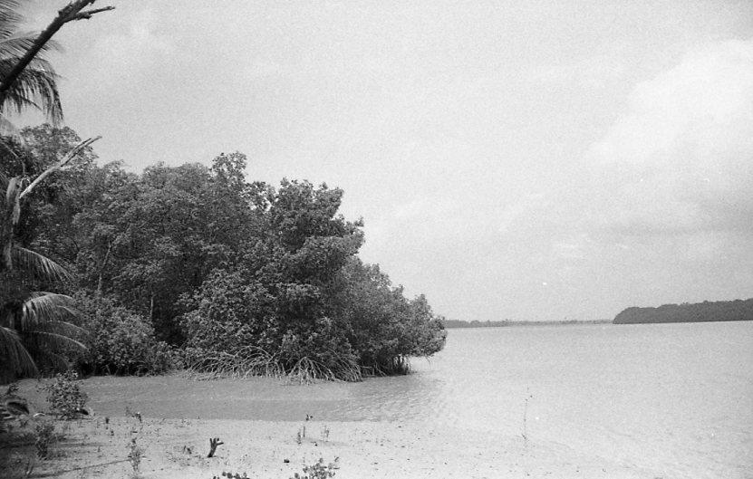 Suriname-088.jpg