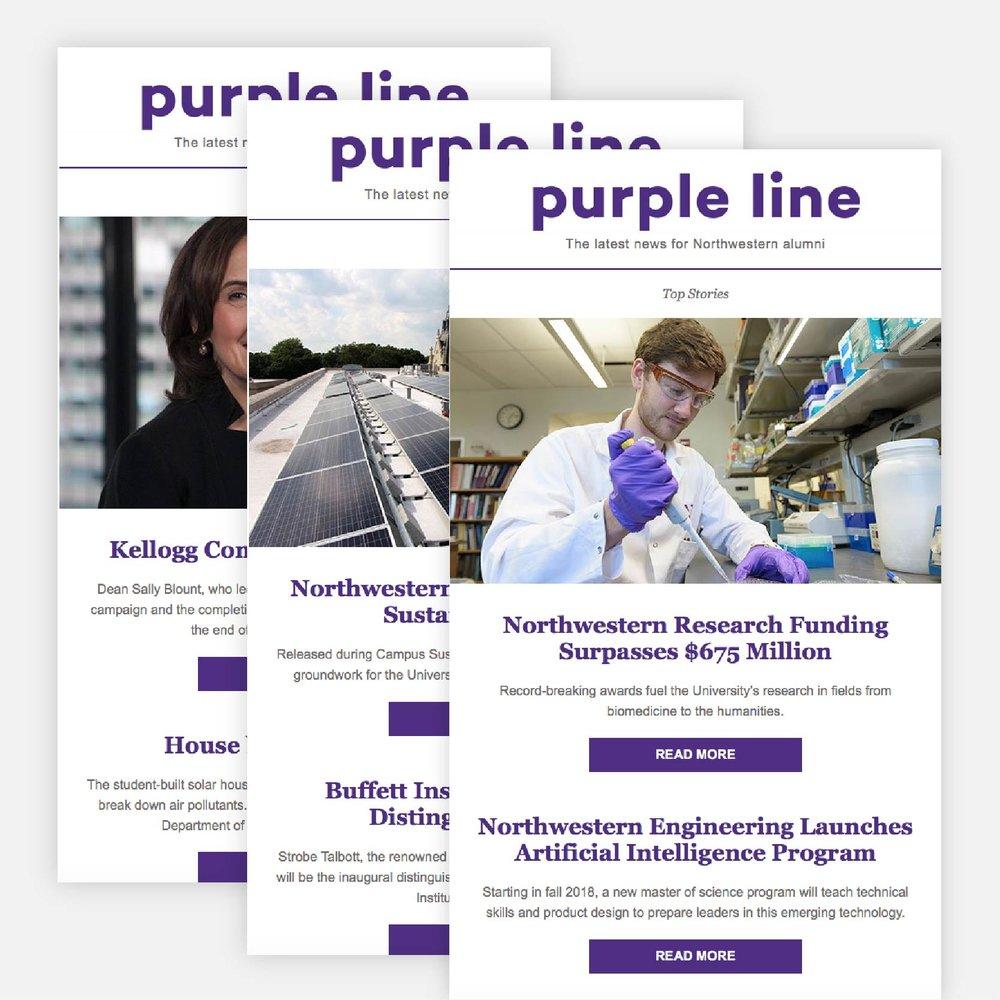 purple-line_mockup3-01.jpg