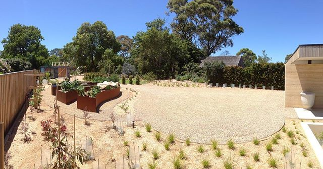 Our Somers project is completed after 5 months of very hard work by our landscaping team and it looks stunning! Can't wait to see it in 12 months with some growth... #lucidalandscapes #landscapeconstruction #melbournelandscaping
