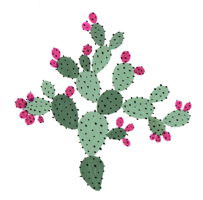 6-Prickly-Pear-bijou-karman-web.jpg