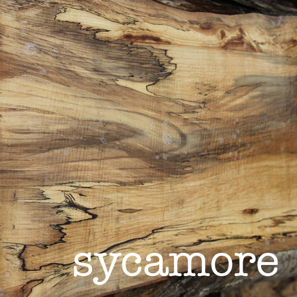 square_spaltedSycamore.jpg