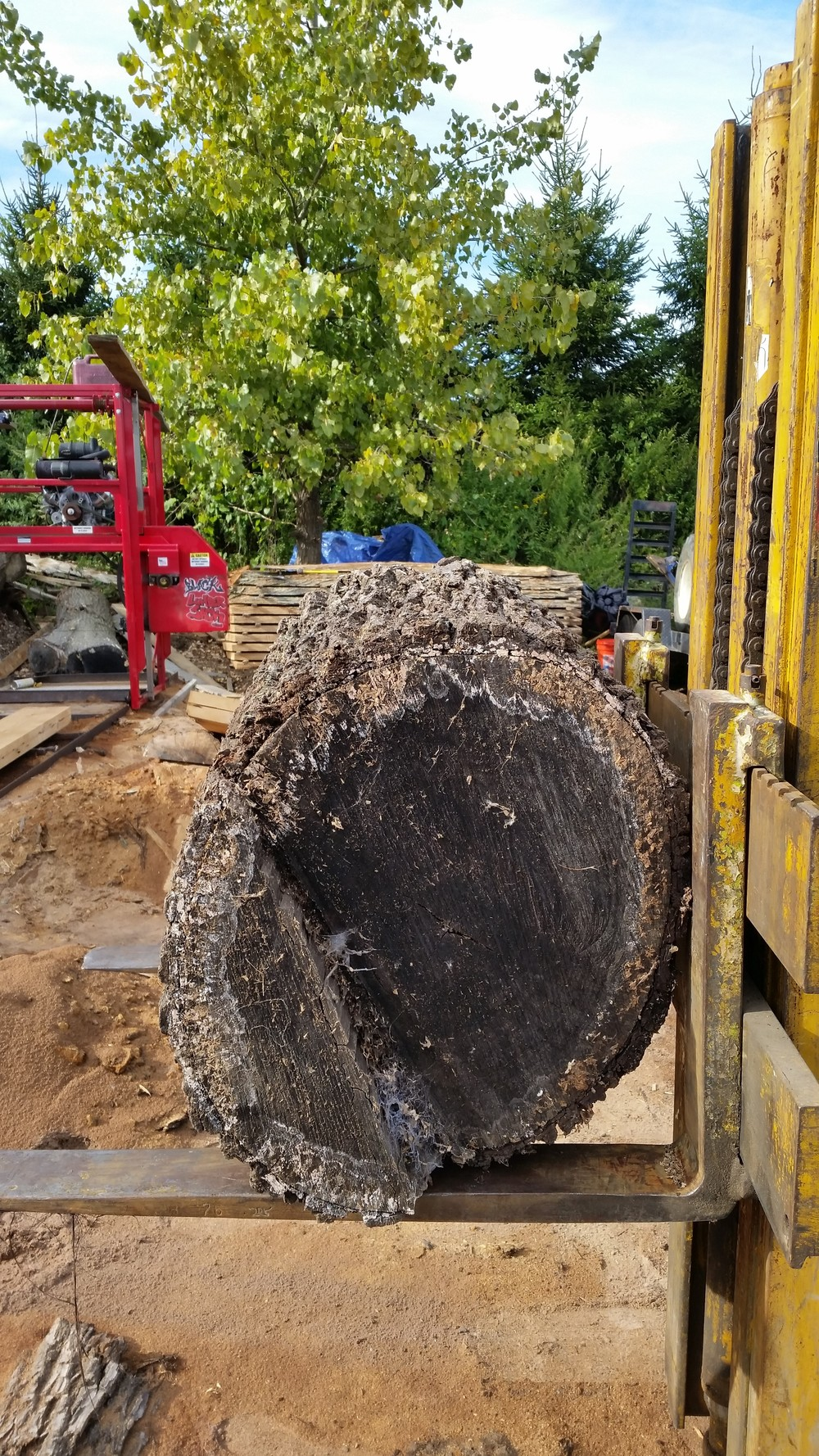 A view of the log from its other side.  Must say the little forklift is quite a work horse!