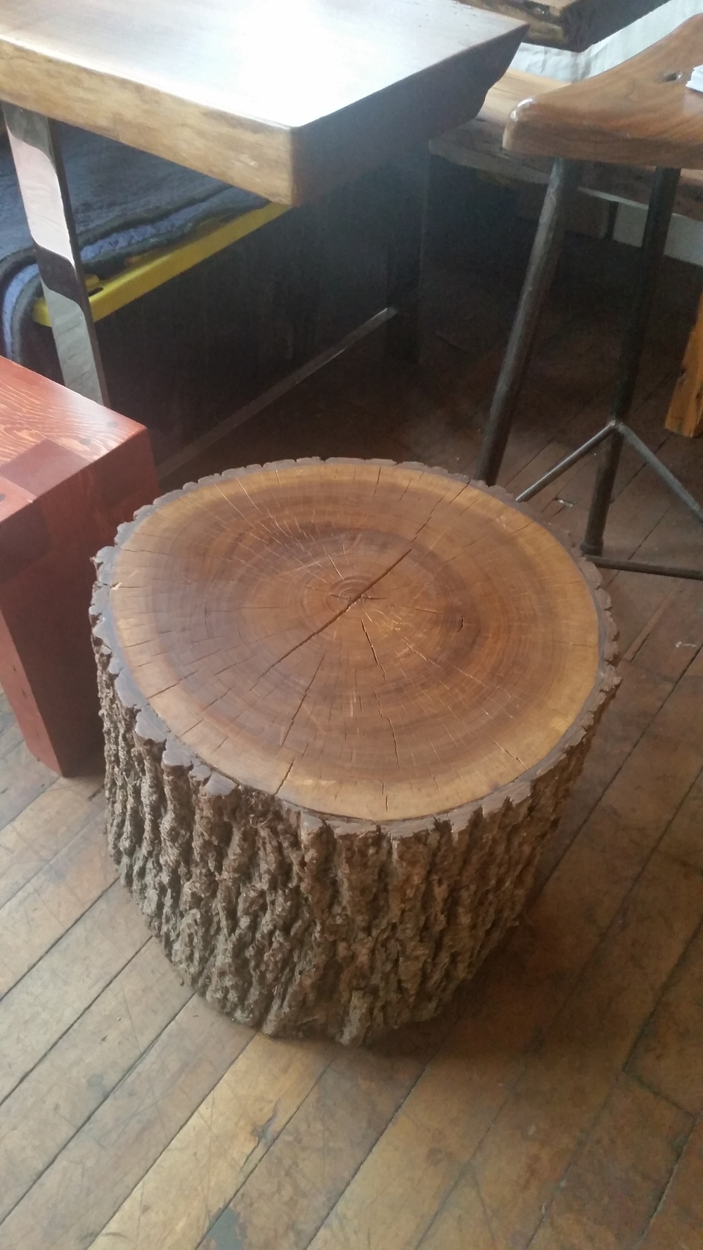 Walnut Stump 12-18-15.jpg