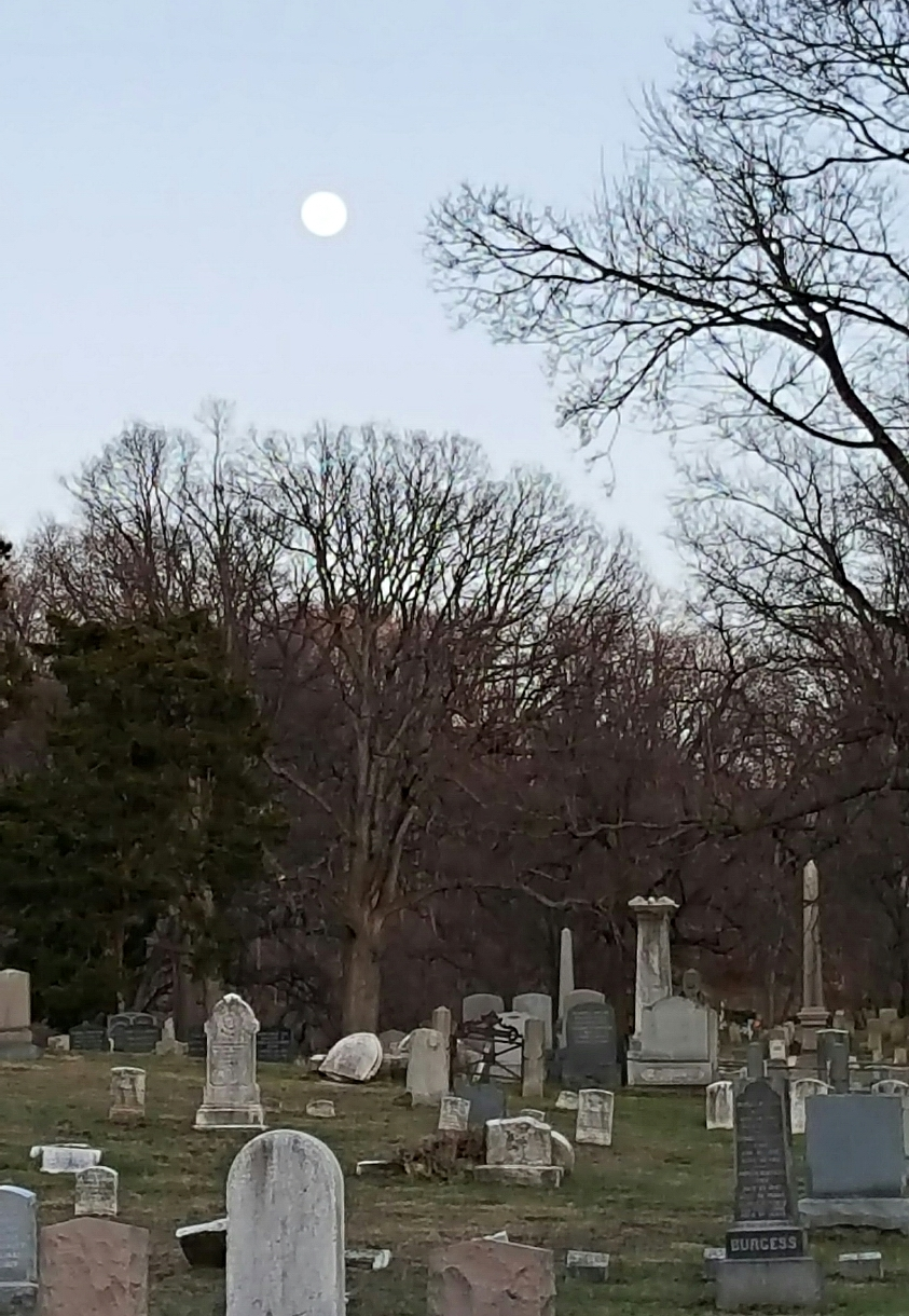 Dusk at Oakland Cemetery