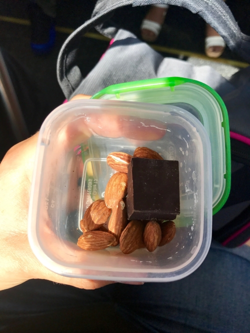 Roasted almonds + hunk of Trader Joe's dark chocolate bar