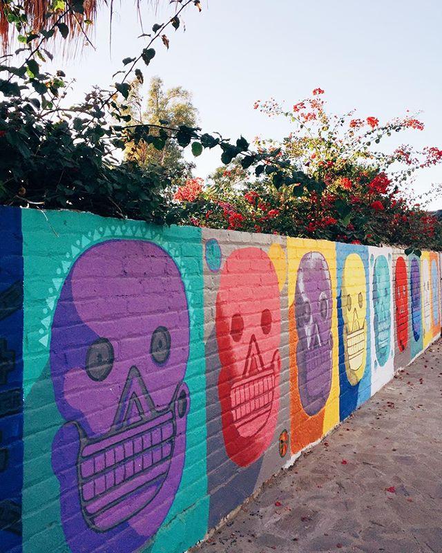Street art 💀