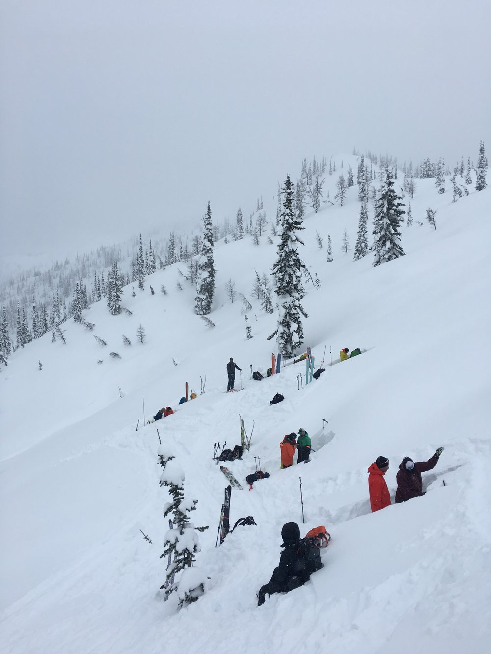AIARE 2 students gathering snowpack obs above Ymir Lodge, March 2018.