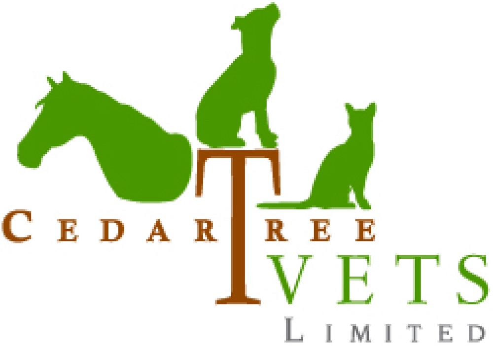 CedarTree Vets Limited | Bermuda Concierge Veterinary Service