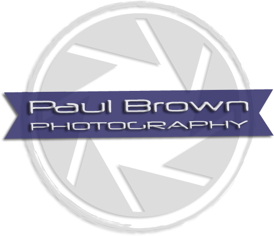PBP-reg-logo-updatedTransparent.png