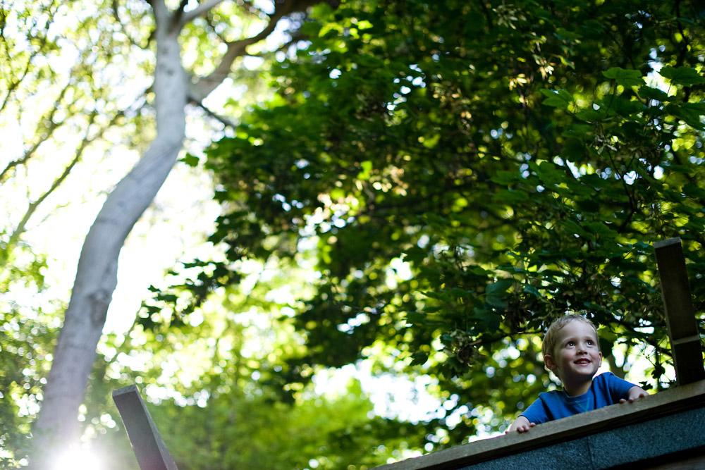 summer trees boy
