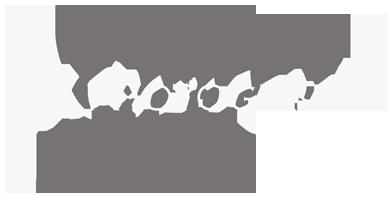 DK-logo-PNG.png