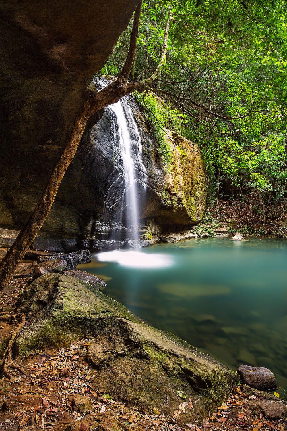 Serenity Falls, QLD. Australia.