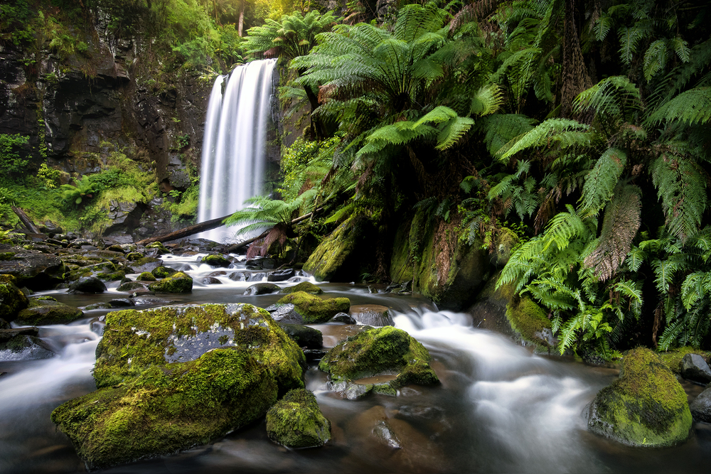 Hopetoun Falls, VIC. Australia