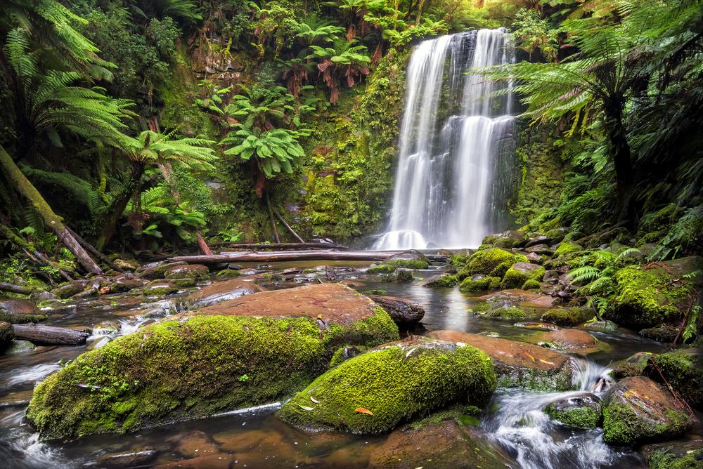 Beauchamp Falls, Victoria.