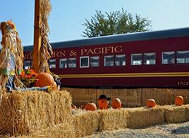 pumpkin liner 1.PNG