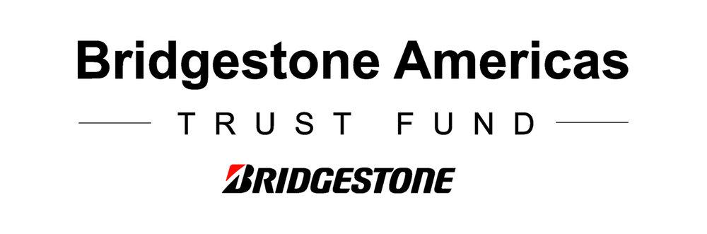 BS Americas Trust Fund logo Arial clr_NEW.jpg