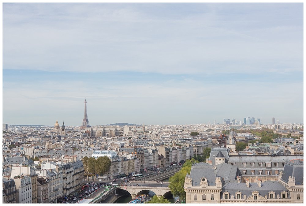 View from top of Notre Dame tower