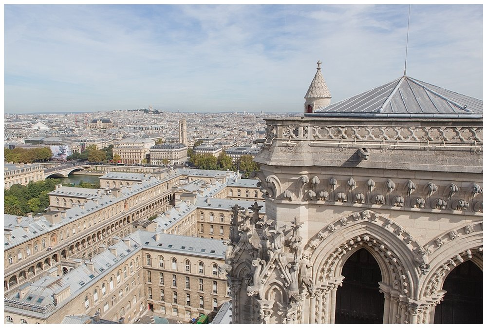 View from top of Notre Dame, the cathedral tower in right foreground