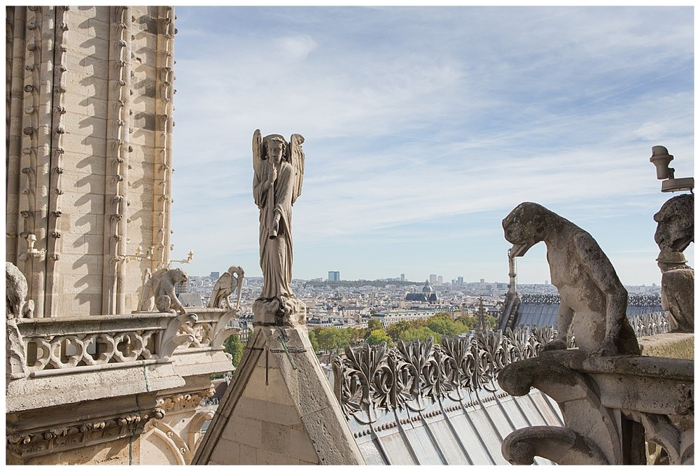 Some of the famed gargoyles and statues