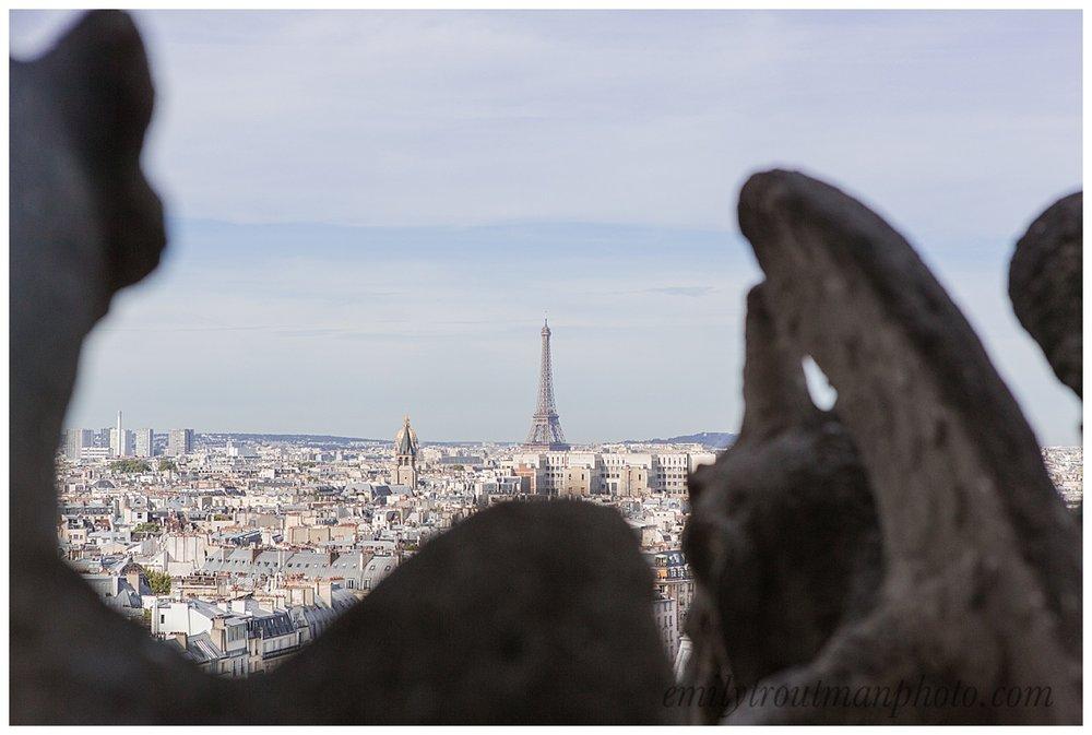 A gargoyle's view of Paris