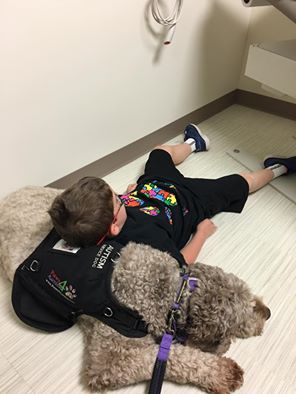 I would never dream of taking Brody to a doctor appointment with me, but the two of us-no way!! It should've been a nightmare but, we are fostering a service dog for autistic kids for the week and this is how it went down ...