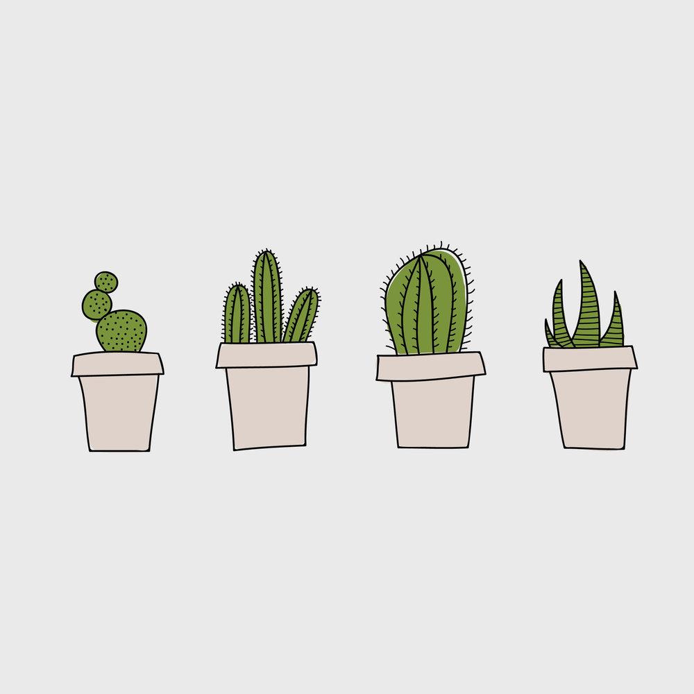 Cactus_Master.jpg