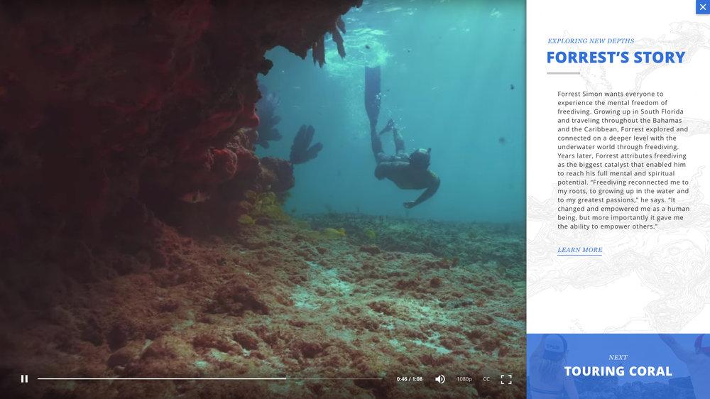 4.1_Experience_VideoText.jpg