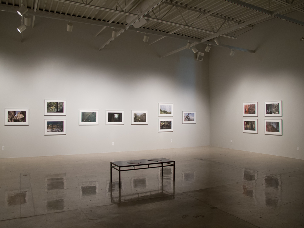 Joseph Gross Gallery, University of Arizona