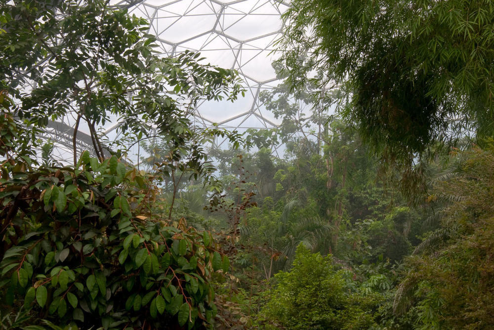 Humid Tropics, Eden Project