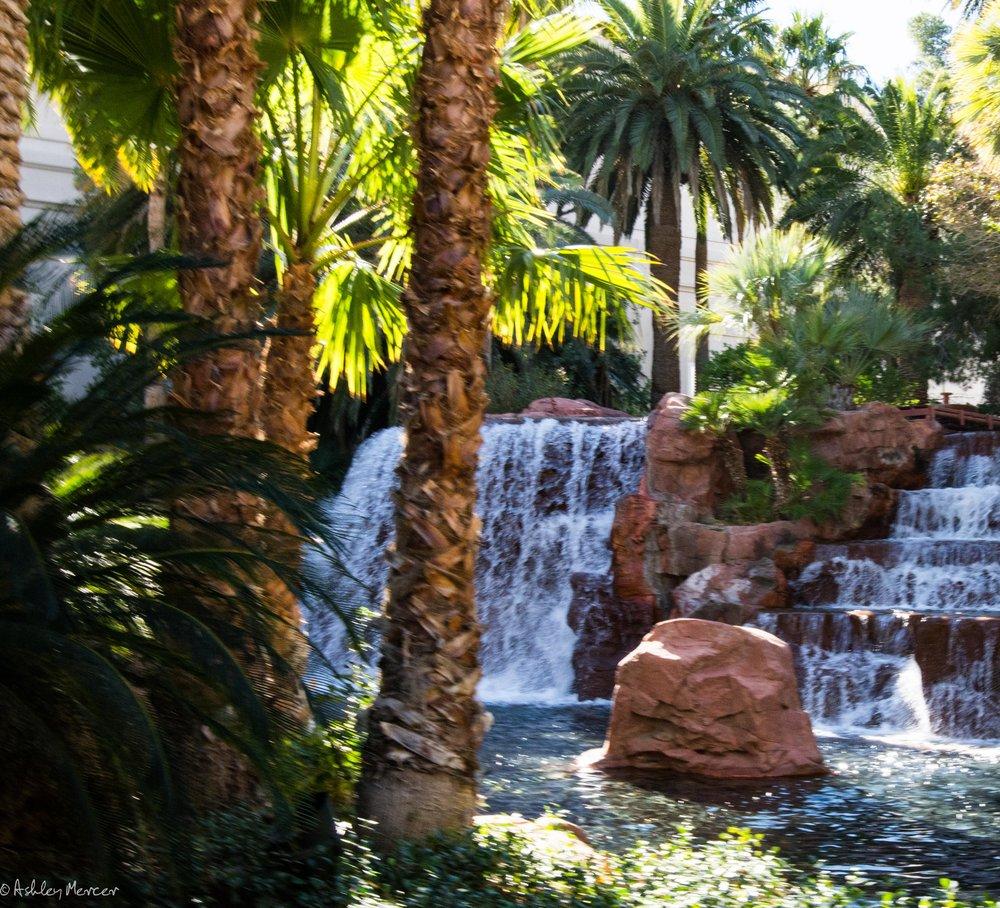 Las Vegas-150.jpg
