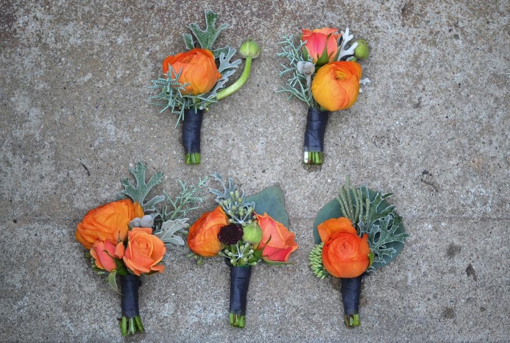 Orange Bouts