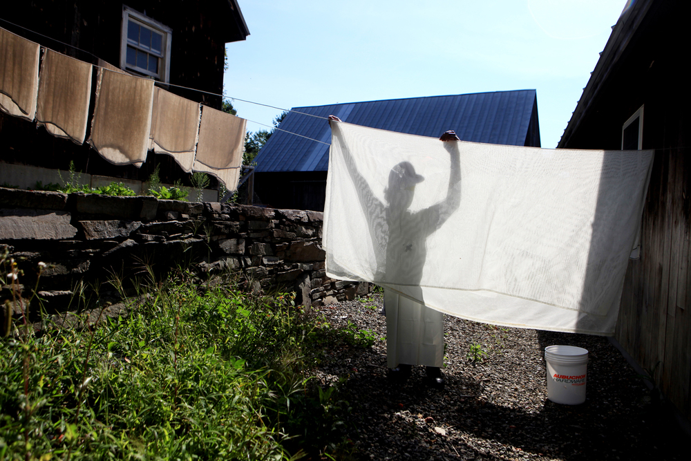 Caleb Putnam hangs sheets of cheesecloth on the line after washing them at his family's farm in North Pomfret, Vt. on August 25, 2014. The fabric is used to remove the curds from the whey. Caleb's parents, John and Janine, own Thistle Hill Farm, which produces organic Tartentaise cheese. Traditionally, John has made the cheese, but this summer, he taught Caleb the process. This was only Caleb's third time making cheese without his dad around.