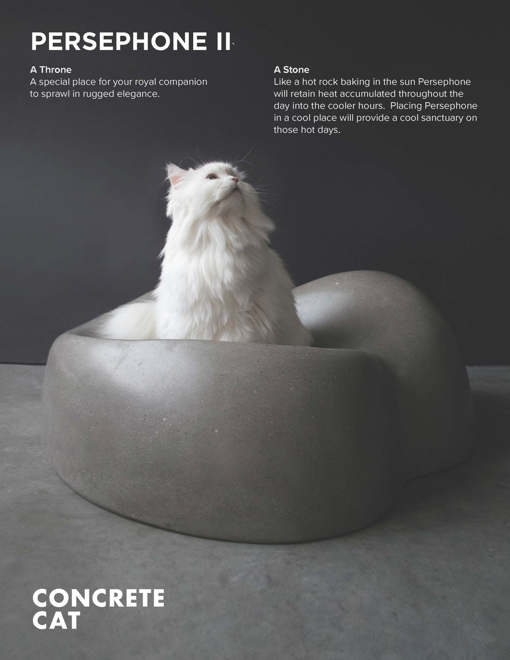 Cat Bed One Sheet I_Page_1.jpg