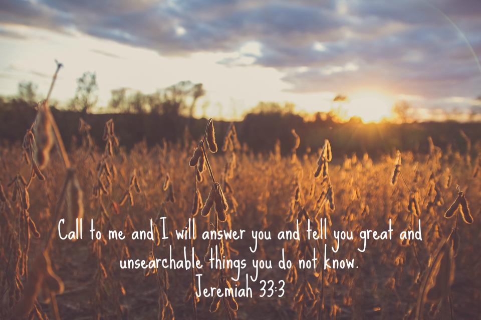 Jeremiah 33.png