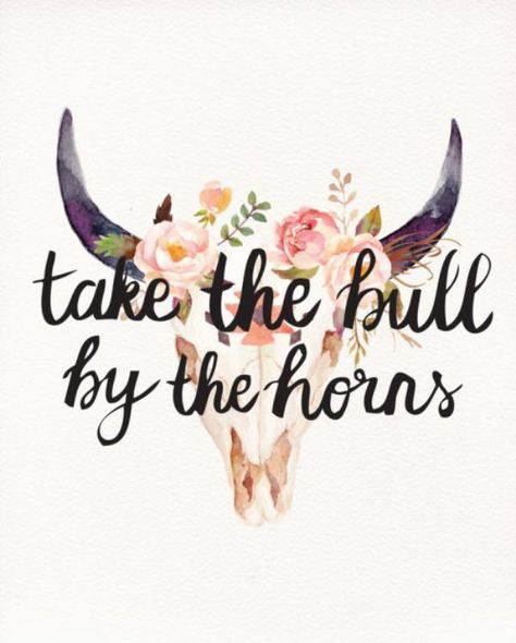 take the bull.jpg