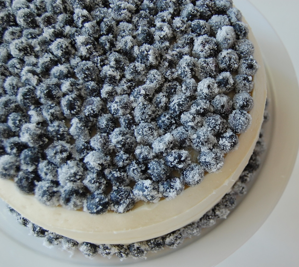 cakes vanilla with sugared blueberries 2.JPG