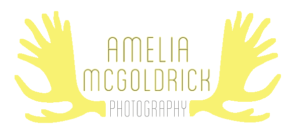 Amelia McGoldrick Photography
