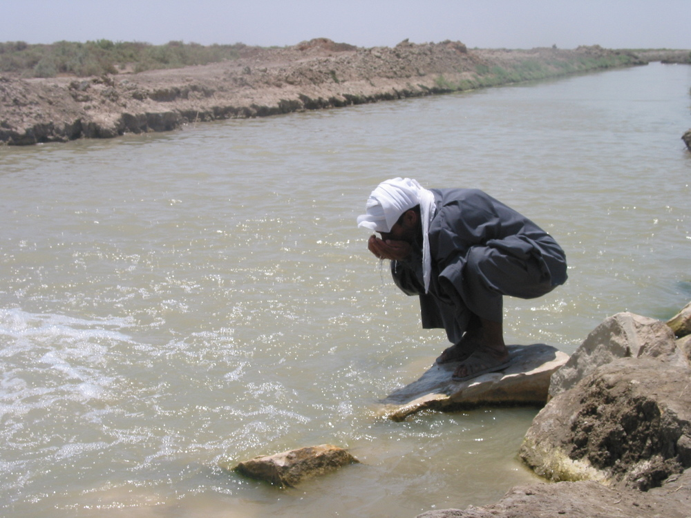 A Marsh Arab drinks from a replenished tributary in Iraq's southern wetlands.