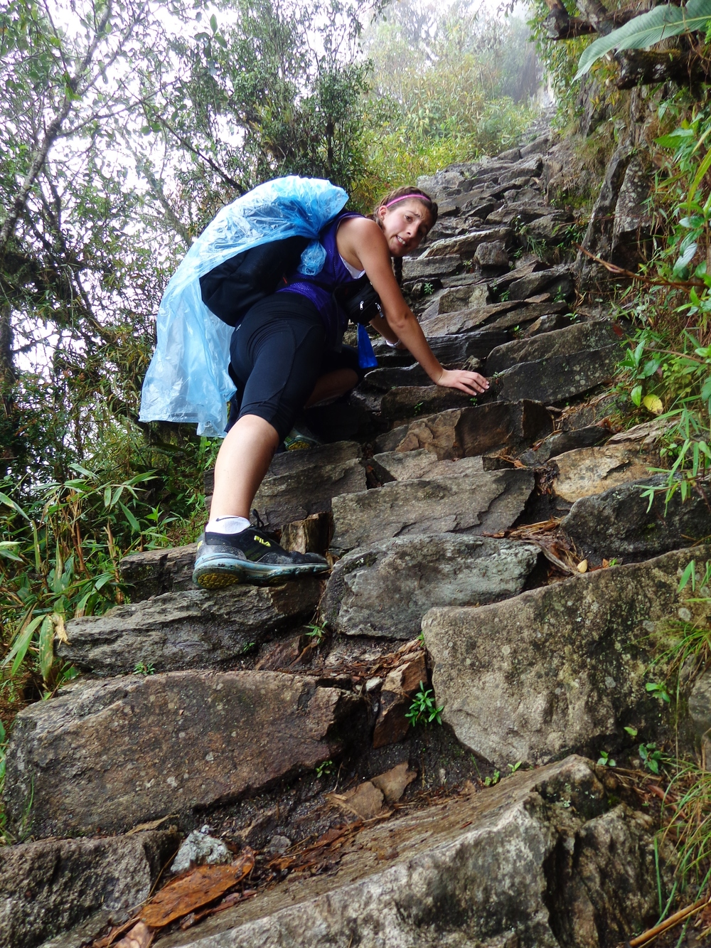 Yup, that's me (practically) vertically climbing Machu Picchu.