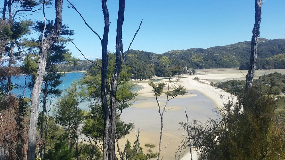 Example of the extreme tides of Abel Tasman coastline