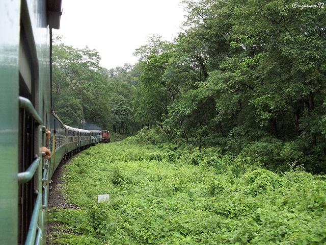 Sevoke Railway ( Image Source )