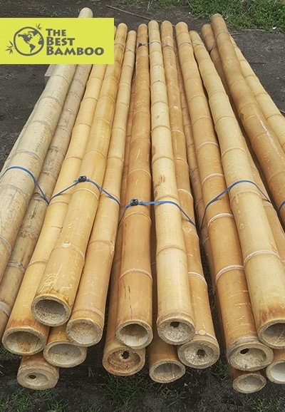 The Best Bamboo
