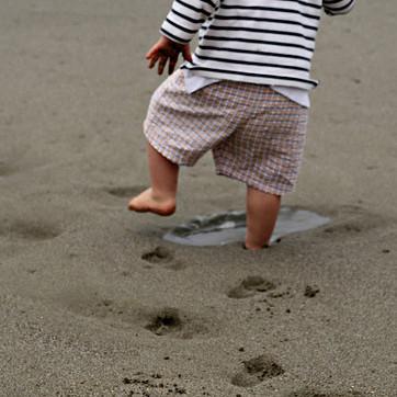 Baby Step to Paleo