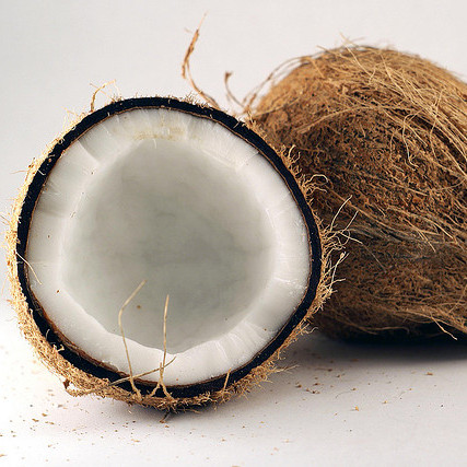 coconut 6.jpg
