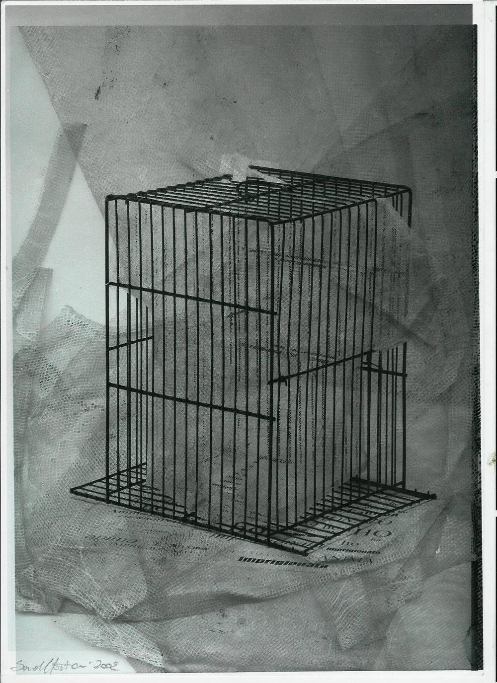 imprigionata - monoprint.jpg