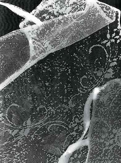 Orma 2002 rayografia cm. 19,5x24,5.jpg