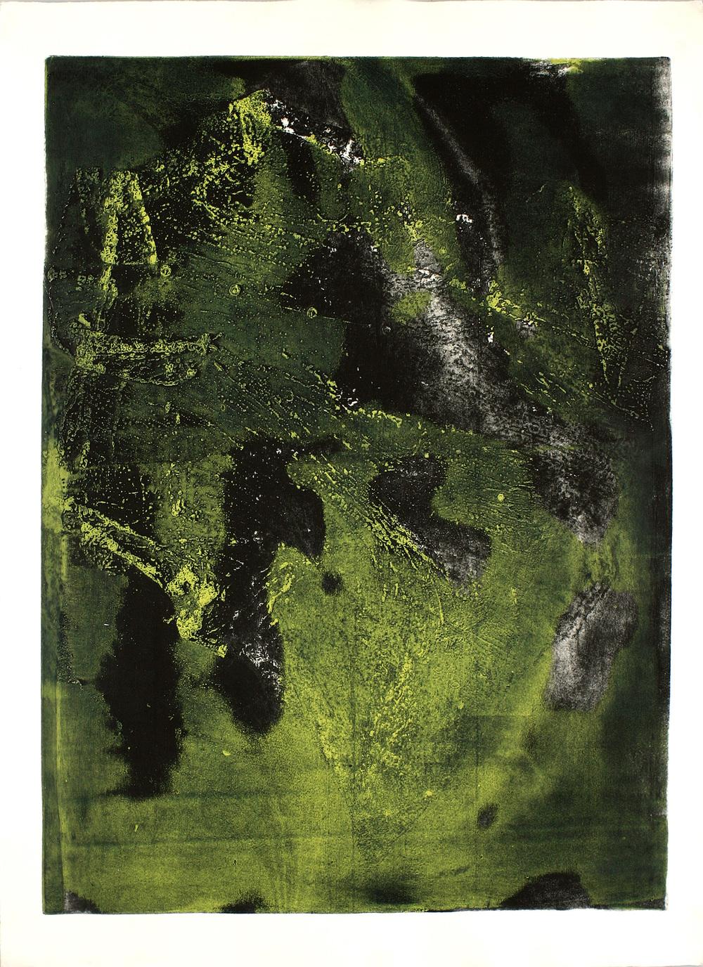 Cartografia ,2006 Controstampa, acquaforte su zinco,monoprint 80x60.jpg