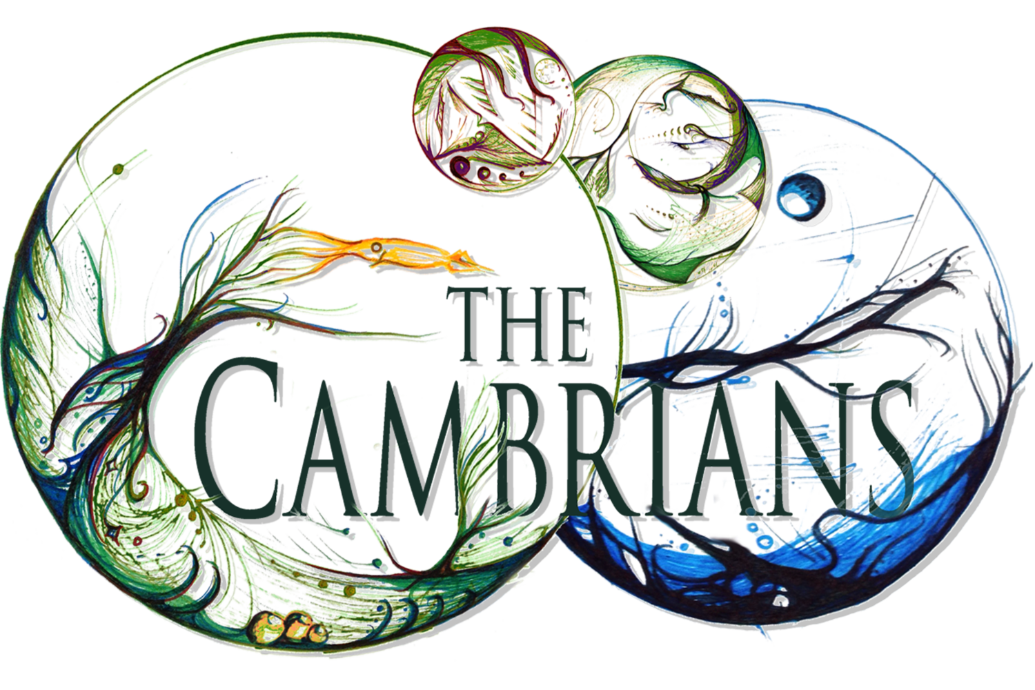 The Cambrians