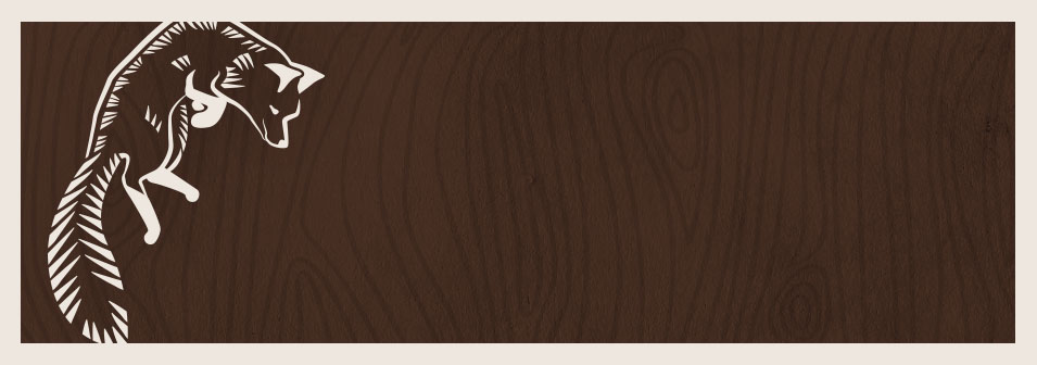 Jordan's knowledge and advice is priceless!  She explains what you need and why, presents options, and has great ideas!  Her understanding of innovative and cutting edge technology has helped me bring my business into the new virtual reality.  And she explains her recommendations in language this layman can comprehend!  Bottom line, she has helped me modernize my reach and expand my business!  Thanks for your help Jordan!      Jodi Turner,  Ottawa-nutritionist.com