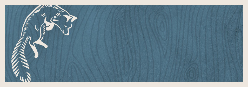 [Danger's] guidance and input proved invaluable every step of the way. From migrating to a social media platform, to promoting the event, the expertise enabled us to launch an effective and customized social media campaign.     Pascal Gin,  Ottawa Quad Sessions